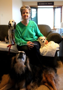 Catherine Pokrywa of Inverary stops for a moment with three of the dogs