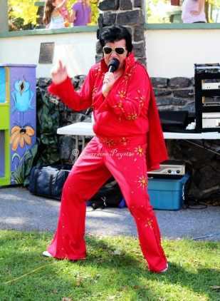 An Elvis sighting in Town Park