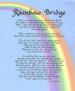RainbowBridge_op_655x800 - from httpwww.illusionkennels.comRainbowBridge.html